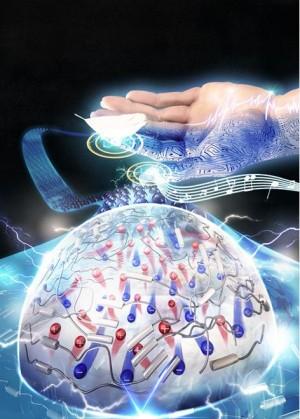 연구진이 개발한 전지피부 모식도 - 미래창조과학부 제공